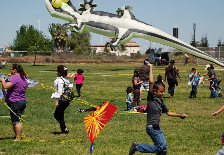Kids Flying Kites with Geko Back
